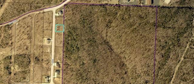 0 Anne Lane, Branson, MO 65616 (MLS #60157095) :: Team Real Estate - Springfield