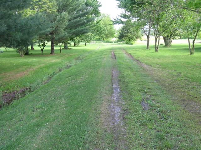 Xx E Farm Road 164, Rogersville, MO 65742 (MLS #60157169) :: Evan's Group LLC