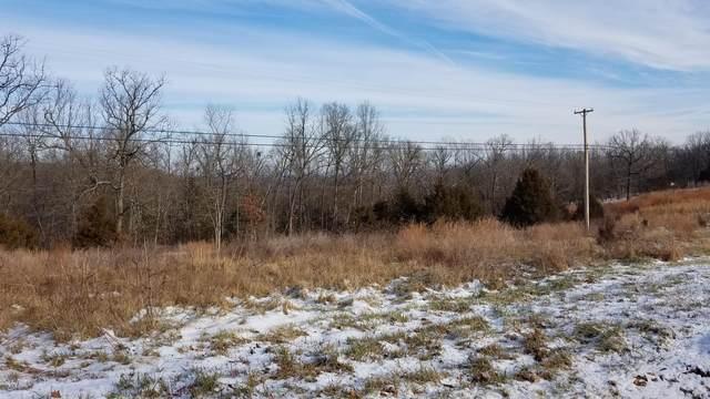 000 State Hwy 32, Buffalo, MO 65622 (MLS #60157189) :: Team Real Estate - Springfield