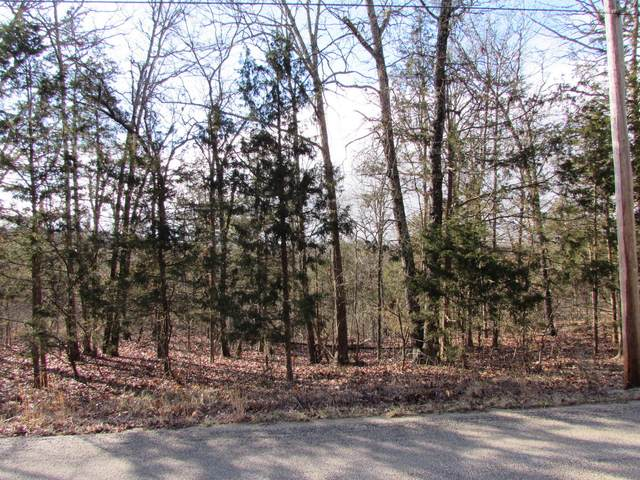 000 Timberlake Road #4, Branson, MO 65616 (MLS #60157200) :: Massengale Group