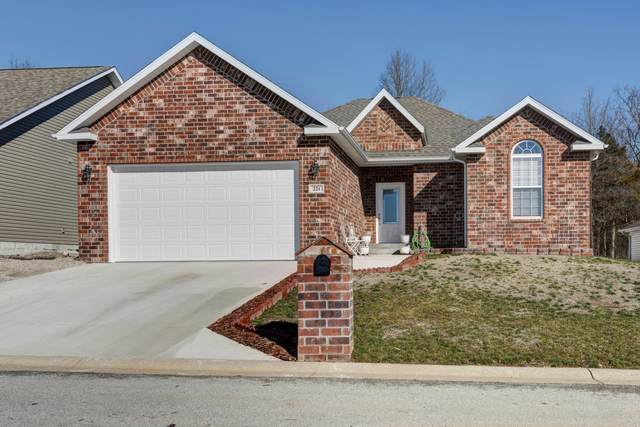 221 Redwine Circle, Branson, MO 65616 (MLS #60157371) :: Team Real Estate - Springfield