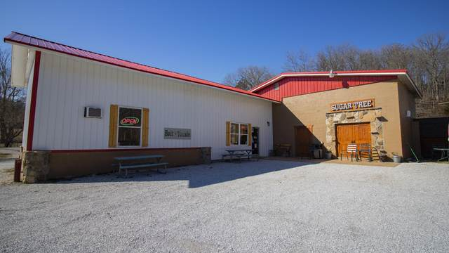 32446 State Hwy 413, Galena, MO 65656 (MLS #60157411) :: Sue Carter Real Estate Group