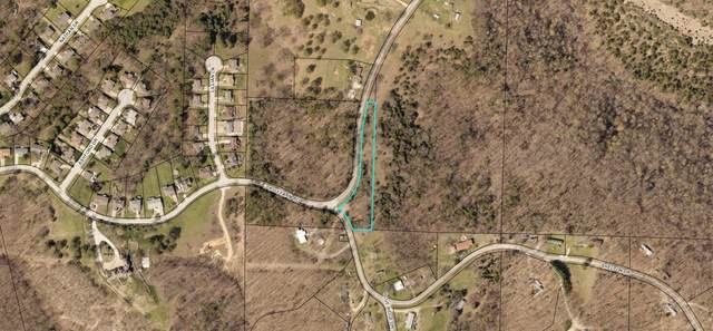 1330 Fruit Farm Road, Hollister, MO 65672 (MLS #60157423) :: Evan's Group LLC