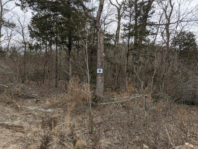 397 Shore Acres Dr. Drive, Powersite, MO 65731 (MLS #60157478) :: Massengale Group