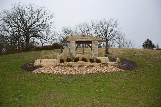 Lot #16 Lone Star Drive, Nixa, MO 65714 (MLS #60157536) :: Evan's Group LLC