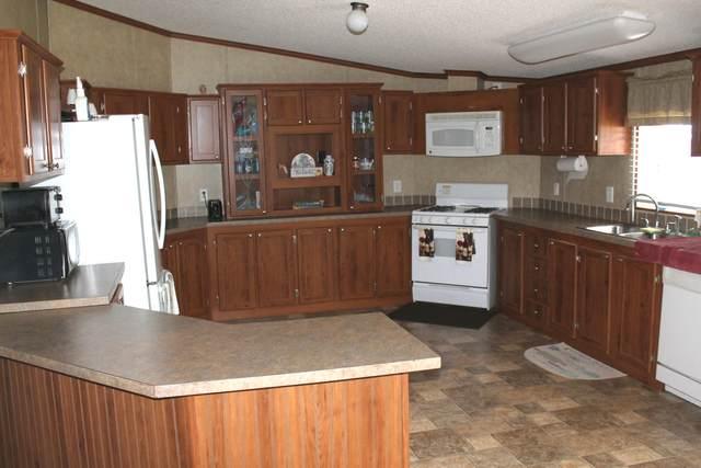 142 Noller Knob, Wasola, MO 65773 (MLS #60157554) :: Evan's Group LLC
