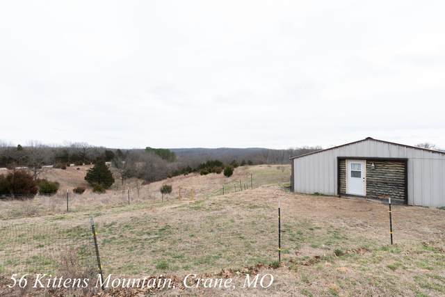 56 Kittens Mountain, Crane, MO 65633 (MLS #60157638) :: Team Real Estate - Springfield
