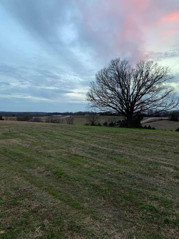 Lot 10 Ironridge Court, Nixa, MO 65714 (MLS #60157664) :: The Real Estate Riders
