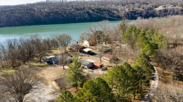 14 The Homestead Place Lane, Cape Fair, MO 65624 (MLS #60157866) :: The Real Estate Riders