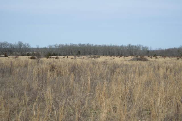 000 County Road 6450, West Plains, MO 65775 (MLS #60157875) :: Massengale Group