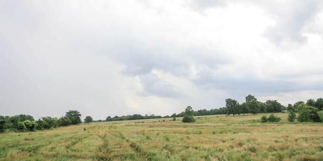 144 Sheridan Road, Fair Grove, MO 65648 (MLS #60158116) :: Winans - Lee Team | Keller Williams Tri-Lakes