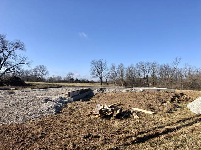 Lot 3 W Pine Ln, Reeds Spring, MO 65737 (MLS #60158308) :: The Real Estate Riders