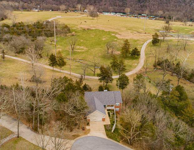 326 Country Bluff Drive, Branson, MO 65616 (MLS #60158310) :: The Real Estate Riders