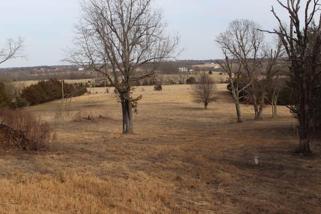 000 N Farm Rd 193, Fair Grove, MO 65648 (MLS #60158415) :: Winans - Lee Team | Keller Williams Tri-Lakes