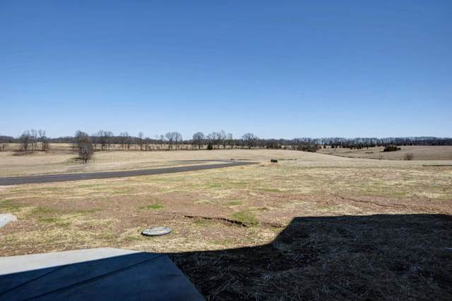 Tract 3 Alexander, Sparta, MO 65753 (MLS #60158620) :: Clay & Clay Real Estate Team