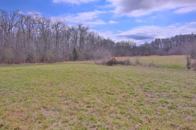 88 Private Road 63 - 91, Thayer, MO 65791 (MLS #60158724) :: Sue Carter Real Estate Group