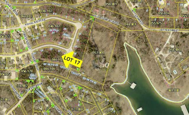 Lot 17 Royale Estates Blvd., Kimberling City, MO 65686 (MLS #60158745) :: The Real Estate Riders