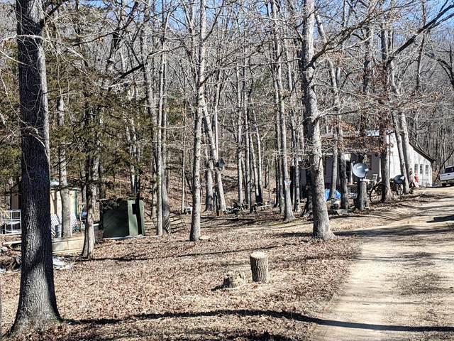 227 Creek Street, Galena, MO 65656 (MLS #60159008) :: Team Real Estate - Springfield
