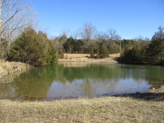 533 Lizard Drive, Gainesville, MO 65655 (MLS #60159275) :: Weichert, REALTORS - Good Life