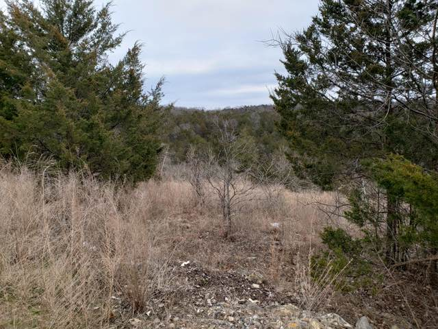 000-Lot 201r Country Ridge Way, Branson, MO 65616 (MLS #60159359) :: The Real Estate Riders