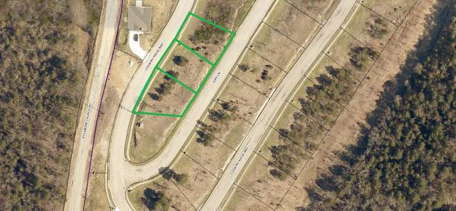 000-Lot 201r Country Ridge Way, Branson, MO 65616 (MLS #60159366) :: The Real Estate Riders