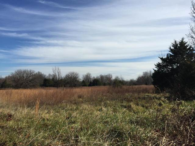 7350 W Farm Rd 170, Republic, MO 65738 (MLS #60160107) :: Clay & Clay Real Estate Team