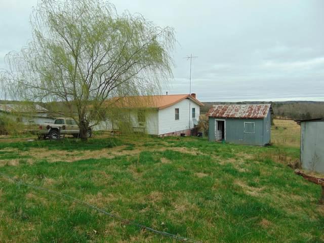 1514 County Road 145, Alton, MO 65606 (MLS #60160340) :: Weichert, REALTORS - Good Life