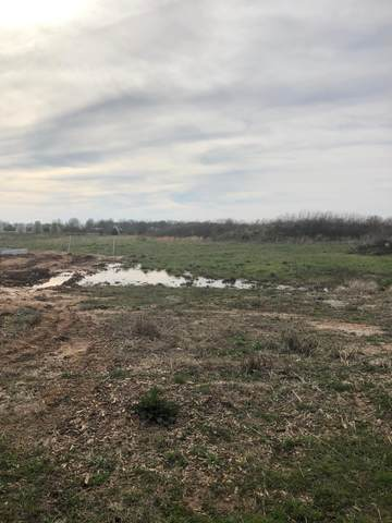 Lot 519 River Pointe Phase 1, Ozark, MO 65721 (MLS #60160606) :: Winans - Lee Team | Keller Williams Tri-Lakes
