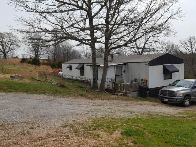 1233 State Highway 101, Bakersfield, MO 65609 (MLS #60160728) :: Weichert, REALTORS - Good Life