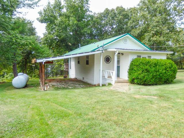 131 County Road 661D, Theodosia, MO 65761 (MLS #60160783) :: Team Real Estate - Springfield