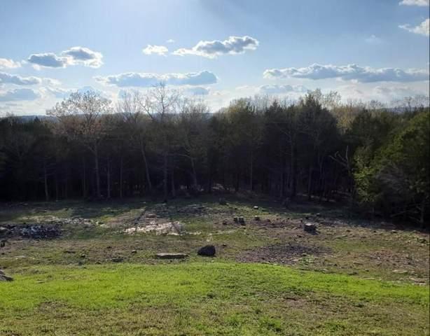 Lot 181 Silver Sunset, Kimberling City, MO 65686 (MLS #60160861) :: Weichert, REALTORS - Good Life