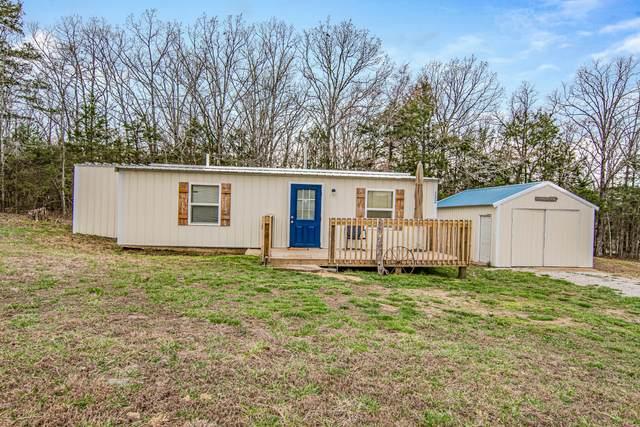 132 State Hwy Oo, Cedar Creek, MO 65627 (MLS #60160889) :: Team Real Estate - Springfield
