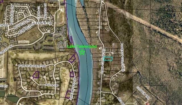 Tbd Iowa Colony Road, Hollister, MO 65672 (MLS #60161159) :: Winans - Lee Team   Keller Williams Tri-Lakes