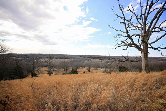 485 E Farm Rd 36, Pleasant Hope, MO 65725 (MLS #60161183) :: Team Real Estate - Springfield