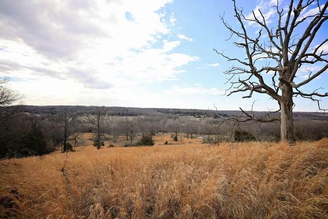 485 E Farm Rd 36, Pleasant Hope, MO 65725 (MLS #60161189) :: Team Real Estate - Springfield