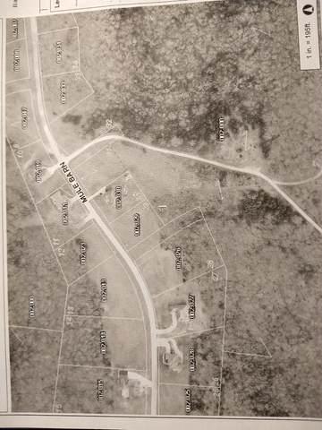 Lot 29 Mule Barn Drive-Edgewater Vill, Cape Fair, MO 65624 (MLS #60161261) :: Clay & Clay Real Estate Team