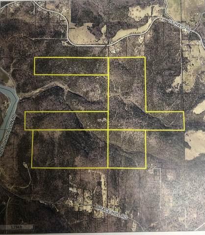000 Us Hwy 160, Kissee Mills, MO 65680 (MLS #60161281) :: Team Real Estate - Springfield
