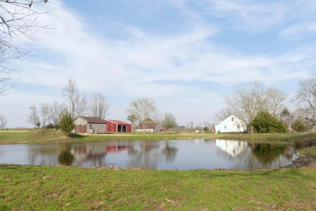 19445 Golden Drive, Raymondville, MO 65555 (MLS #60161317) :: Winans - Lee Team | Keller Williams Tri-Lakes