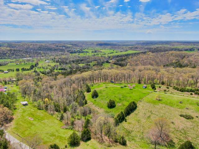 111 Kittens Mountain, Crane, MO 65633 (MLS #60161500) :: Team Real Estate - Springfield