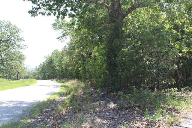 000 Tbd Clarkson & Matherly Road, Protem, MO 65733 (MLS #60161778) :: Sue Carter Real Estate Group