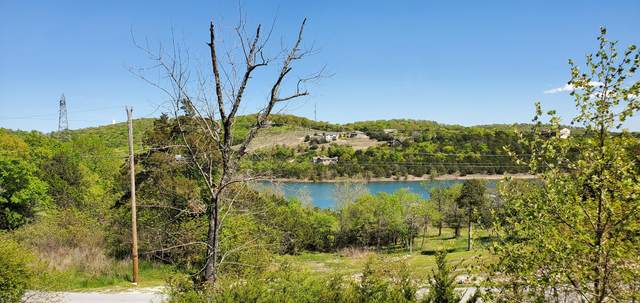 Tbd Red Cedar Point Lot 22-26 Block C, Branson, MO 65616 (MLS #60162251) :: Weichert, REALTORS - Good Life