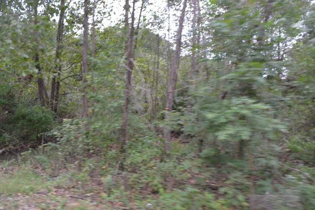 E 1/2 Lot 27 Eastwind, Loma Linda, MO 64804 (MLS #60162277) :: Clay & Clay Real Estate Team