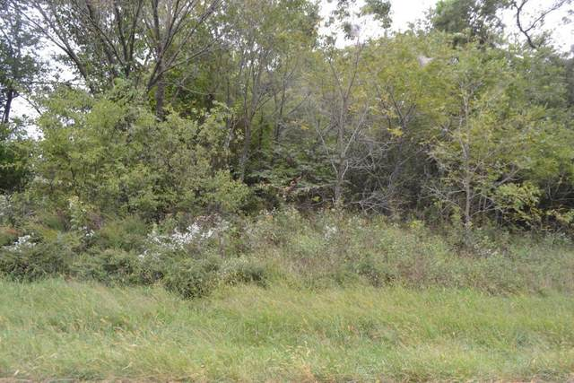 W 1/2 Lot 18 E 1/2 Lot 19 Loma Linda Drive, Loma Linda, MO 64804 (MLS #60162284) :: Clay & Clay Real Estate Team