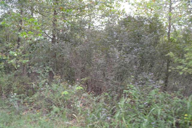 Lot 11 Block 12 Loma Linda Drive, Loma Linda, MO 64804 (MLS #60162285) :: Clay & Clay Real Estate Team