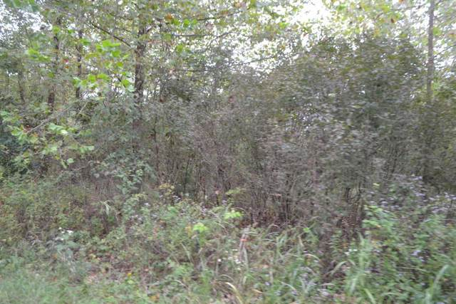 Lot 7 Blk 11 Eastwind, Loma Linda, MO 64804 (MLS #60162292) :: Clay & Clay Real Estate Team