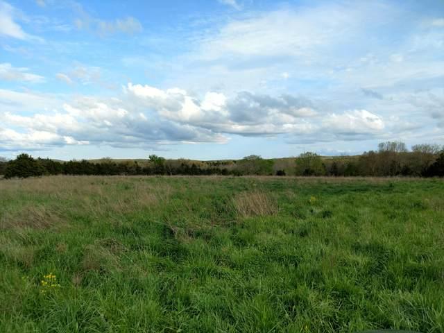 000 E Farm Rd 48, Fair Grove, MO 65648 (MLS #60162418) :: Weichert, REALTORS - Good Life