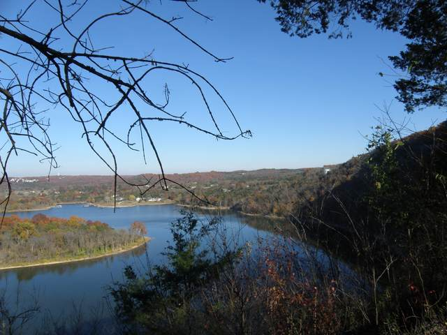 D728 Long Bend Road, Galena, MO 65656 (MLS #60162568) :: Team Real Estate - Springfield