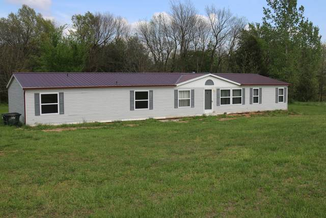20 Windstorm Lane, Buffalo, MO 65622 (MLS #60162764) :: Team Real Estate - Springfield