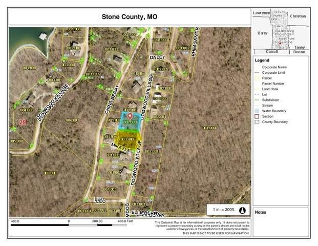 000-Lots 128/129 Dogwood Village Lane, Lampe, MO 65681 (MLS #60162805) :: Sue Carter Real Estate Group