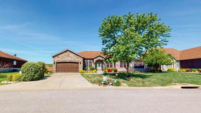 185 Stoney Pointe Drive, Hollister, MO 65672 (MLS #60163358) :: Clay & Clay Real Estate Team